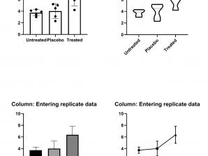 ویدئو. مثال آموزشی Column Entering Replicate Data
